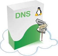 icon.action.dnslinux